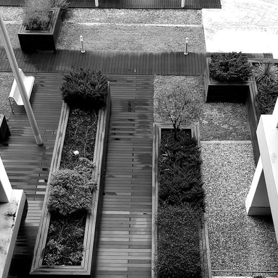 The garden...in the building. EyeEmNewHere Window Box Architecture Building Exterior Built Structure