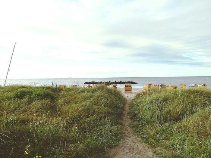 Baltic Sea Nature