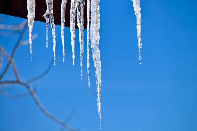 Low angle view of icicles against clear blue sky