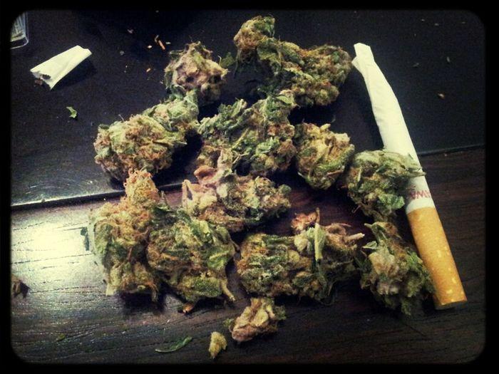 German Weed...