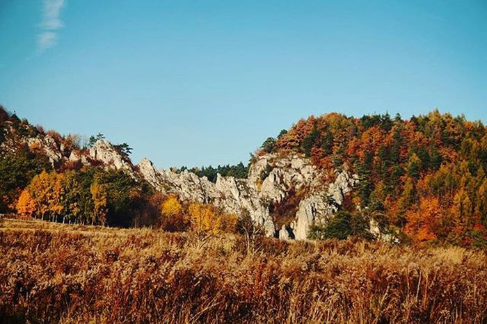Autumn landscape Autumn Landscape Canon EOS 1000D Karniowice Poland Beautiful Colors Valley Entrance Mountains Nature