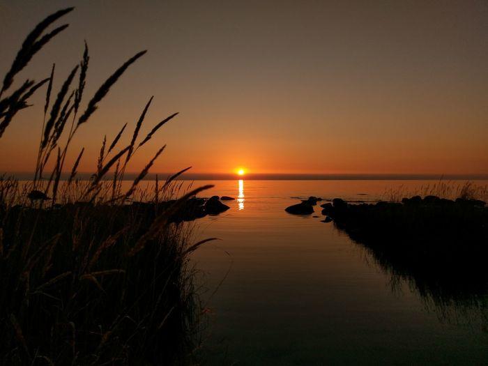 Gotland Sweden Scandinavia Nyhamn Beach Playa Naturelovers Landscape Landskap Sun Sunset Water Tranquil Scene Tranquility Scenics Sea Beauty In Nature Horizon Over Water Idyllic Sunbeam Grass Nature Glowing Non-urban Scene Atmospheric Mood
