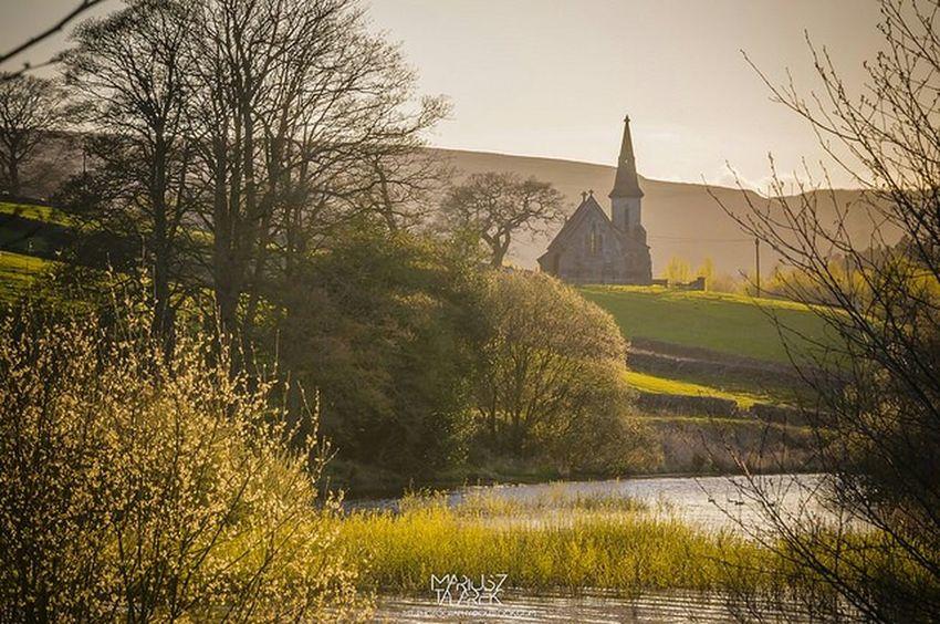 Sunset gold light. EyeEm Best Shots - Landscape Eye4photography  Landscape Streamzoofamily