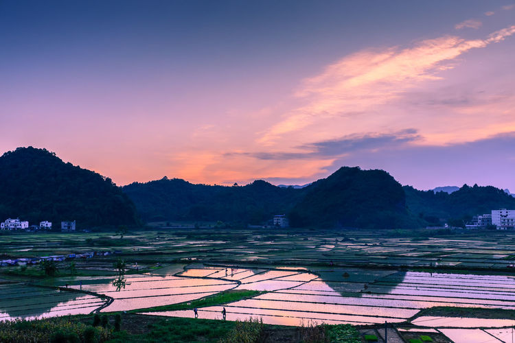 Sunset over rice farm in South China Agriculture Beauty In Nature Field Landscape Mountain Nature No People Outdoors Rice Rice Paddy Rural Scene Scenics Sky Sunset Tranquil Scene Tranquility Tree Water