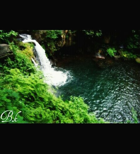 Nationalpark Taking Photos Green EyeEm Nature Lover Water Nature_collection Blue Amazing_captures Check This Out Mexico