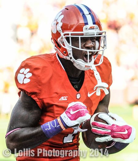 Clemson Tigers Mike Williams reacts after making a big catch vs Louisville on Oct.11. College Football Clemson ACC Football Sports Photography Gridiron