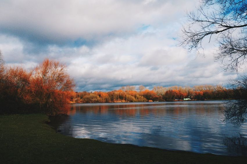 January in the U.K. Tree Nature Sky Water Change Beauty In Nature Autumn Scenics Tranquility No People Outdoors Lake Tranquil Scene Day Growth Cloud - Sky Landscape