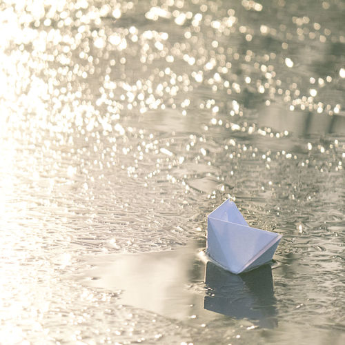 Close-up of paper floating on water