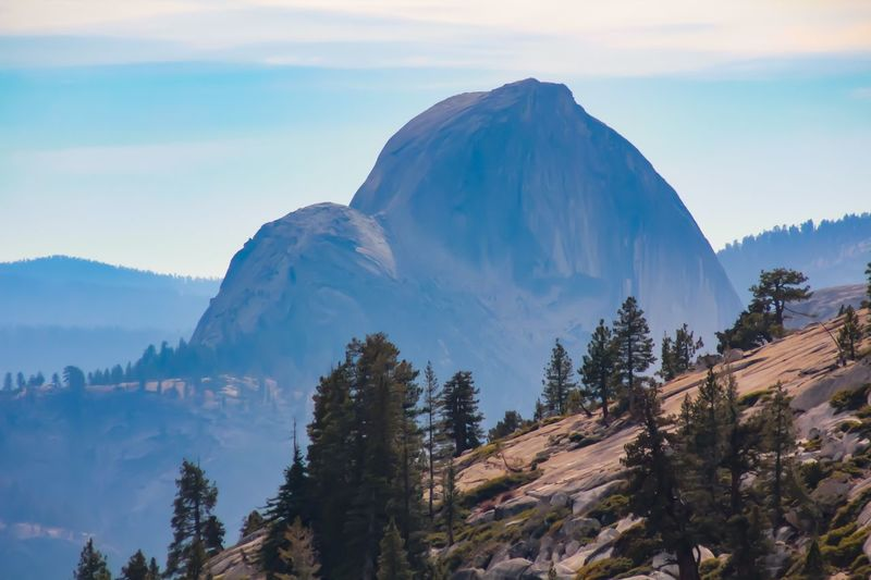Half Dome, from reverse Half Dome Yosemite National Park Mountain Sky Beauty In Nature Tree Scenics - Nature Tranquil Scene Plant
