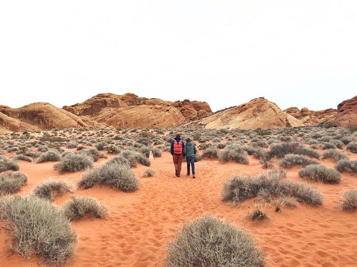 Nevada, valley of fire state park, road trip Real People Sky Lifestyles Land Rear View Clear Sky Summer Road Tripping Nature Scenics - Nature Desert Beauty In Nature Tranquility The Traveler - 2018 EyeEm Awards