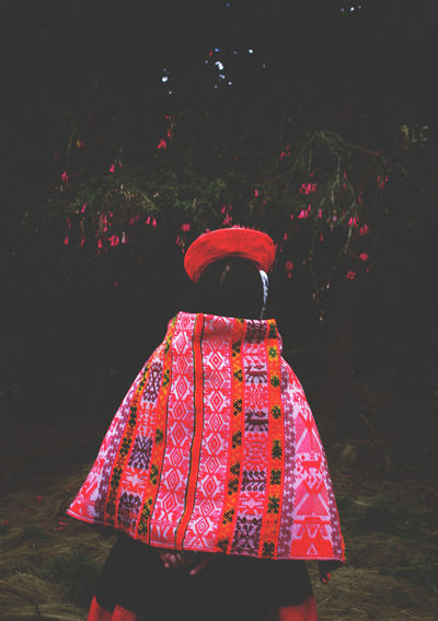 Rear View Of Woman In Traditional Clothing On Field