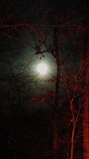 Missouri Winter Moon First Eyeem Photo