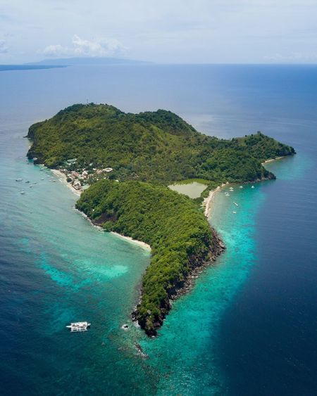 Flying over Apo Island in the Philippines 🇵🇭 It's a great destination if you want to discover a beautiful underwater paradise