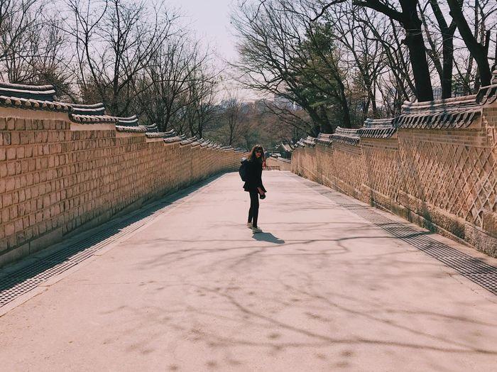 Full length of man walking on bare trees