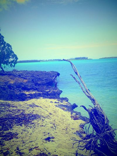 Isle Of Pines Kanaky Drubea Kapume Beachphotography Life Is A Beach Sea And Sky