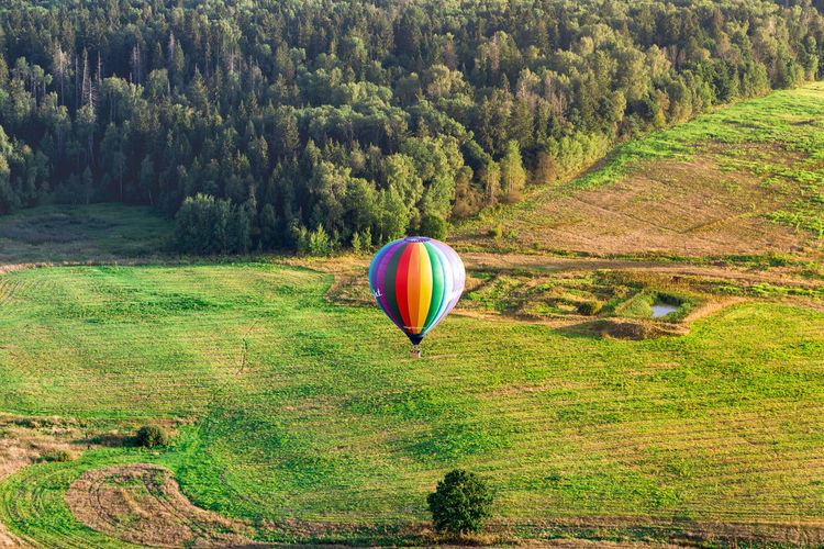 Hot air balloon in field