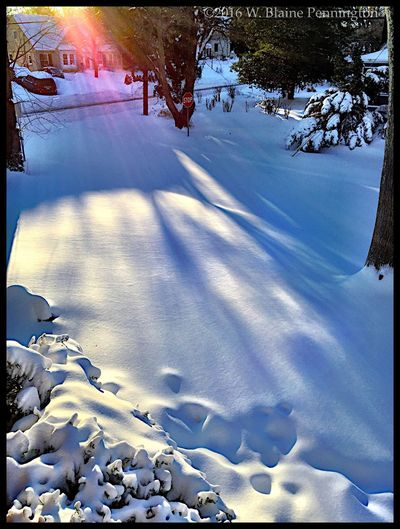 Sunrise, our street, 28+ inches of snow. Snowzilla Blizzard 2016 Epic Snow Silver Spring