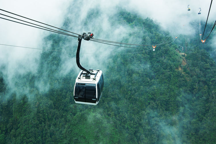 High angle view of overhead cable car against trees