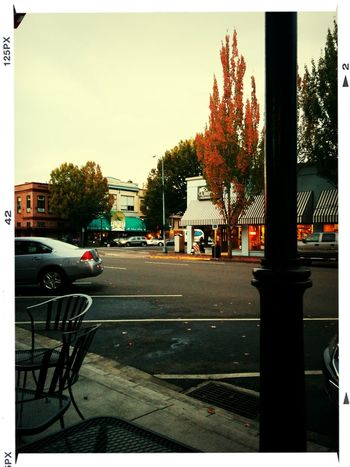 Autumn Evening Light Hometown Beautiful Pacific Northwest