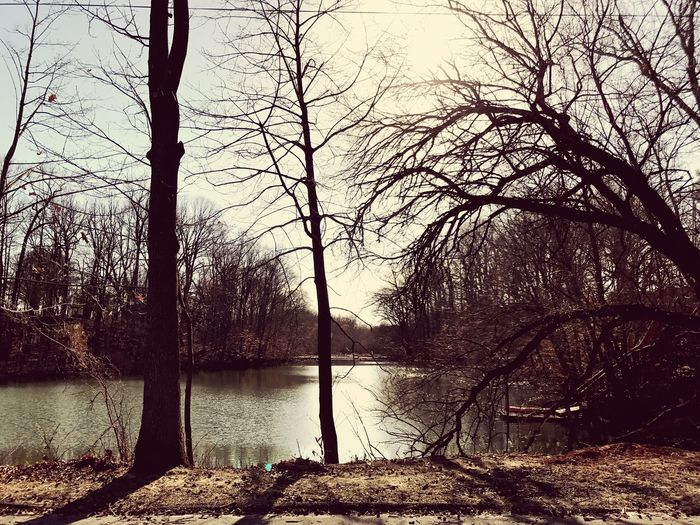 Brisk day at the lake Nature Tranquil Scene Tranquility Lake Nature Landscape_Collection Landscape Landscape_photography Winter Wintertime Water