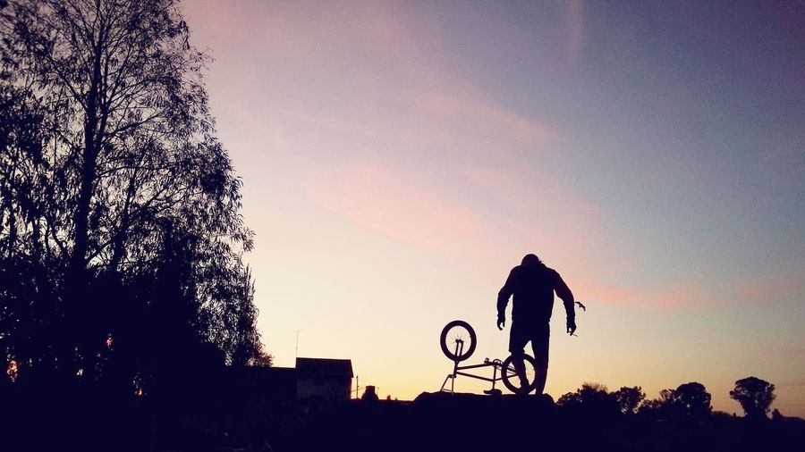 Riding Bmx  is my Passion Dirt Jumps Shadows Silhouette Trees