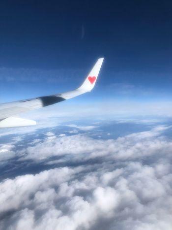 今日の空 Skymark Airlines Skymark Sky Cloud - Sky Air Vehicle Airplane Flying Aircraft Wing Nature