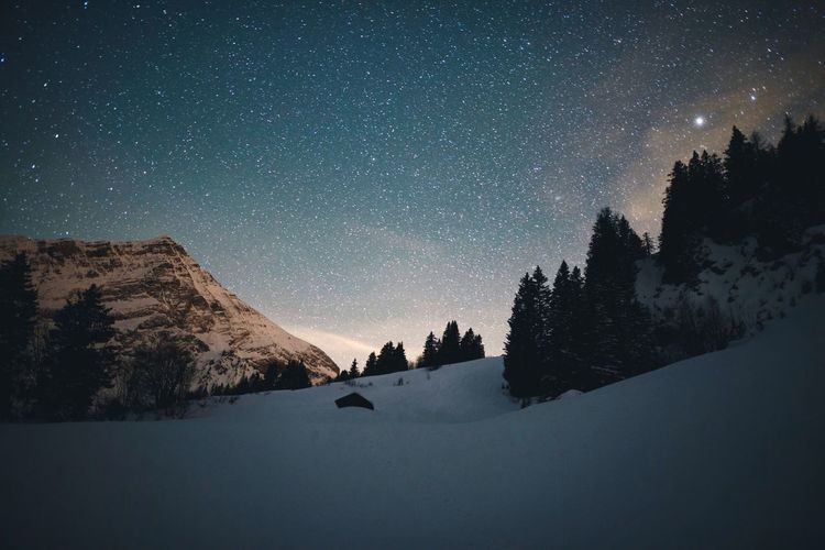 Star - Space Snow Night Cold Temperature Astronomy Winter Sky Beauty In Nature Mountain Space Galaxy Constellation Nature Tree Space And Astronomy Milky Way Outdoors No People Scenics Landscape