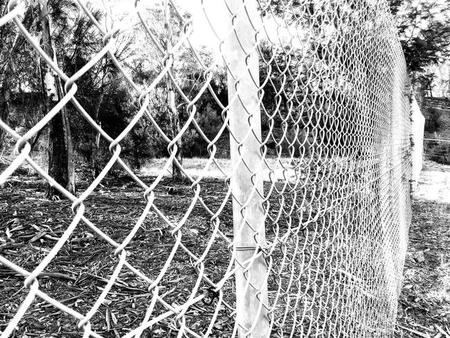 Wire Fence Black And White Black & White Taking Photos Enjoying Life No People On The Outside Looking In Check This Out