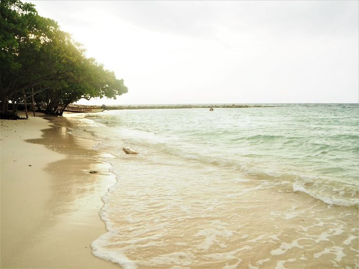 Beach Beauty In Nature Coast Horizon Over Water Island Nature Sand Scenics - Nature Sea Sun Tranquil Scene Tranquility Tree Tropical Water Wave