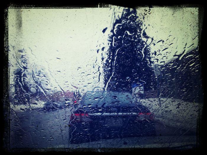rainning everyday yay!! u__u