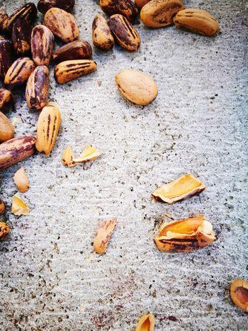 EyeEmNewHere No People Nut - Food Outdoors Food Close-up Nature Day Pine Nut Pesto Alla Genovese Pesto Preparation Pesto Sauce Homemade Sunday Morning Family Leica Huawei P9 Lovelynatureshots The Week On EyeEm EyeEm Gallery Childhood
