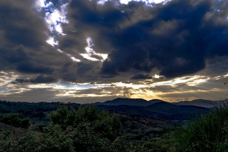 Alájar, Sierra de Aracena (Huelva, España) EyeEm Selects Sunset Sunset_collection Landscape Landscape_Collection Mountain Forest Rural Scene Trees Fog Sunlight Sky Nature Beauty In Nature Cloud - Sky Dramatic Sky Outdoors Sunrays Tranquility EyeEmNewHere EyeEm Best Shots EyeEmBestPics EyeEm Nature Lover EyeEm Gallery Alájar, Sierra De Aracena (Huelva, Spain)