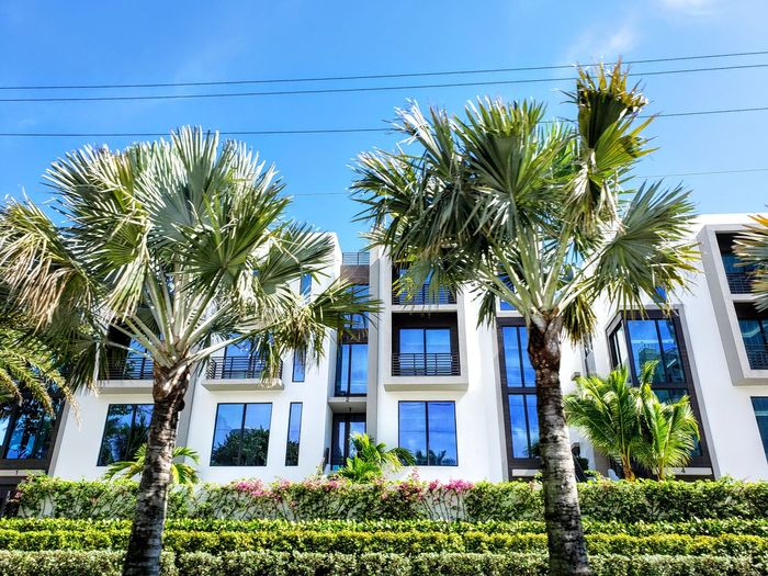Low angle view of palm trees and building against blue sky
