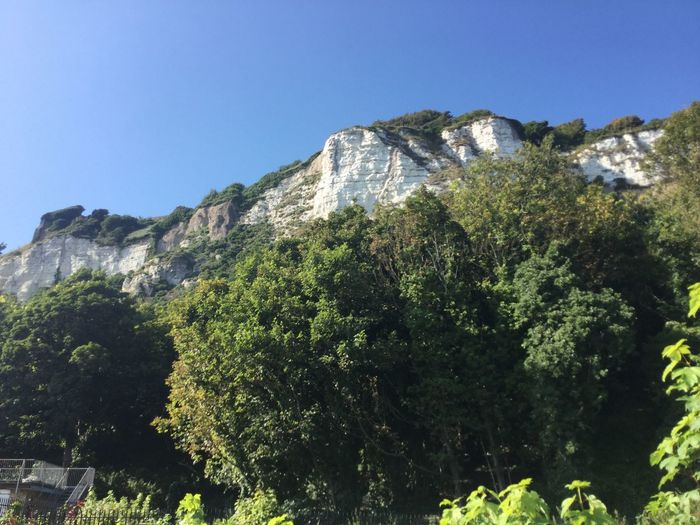 Beauty In Nature Blue Clear Sky Day Nature No People Scenics Tranquil Scene Tranquility White Cliffs Of Dover