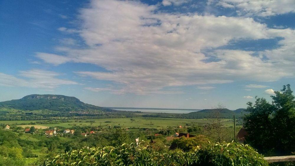 Balaton - Hungary Badacsony Cloud - Sky Agriculture Nature Growth Tree Field Sky