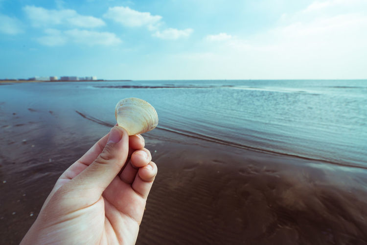 Close-up of hand holding seashell at beach against sky