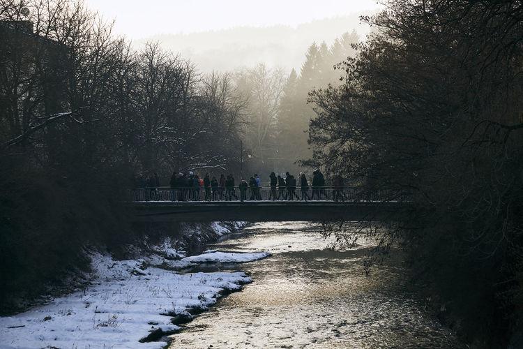 People On Bridge Over Frozen Lake Amidst Trees