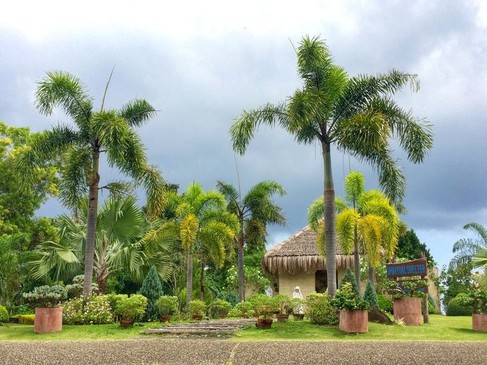 A must visit place in Dumaguete Philippines. A personal favorite of mine. IPhoneography My Solo Traveling Travel Phillipines Metime Chilling