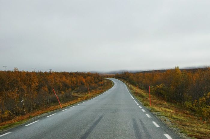 Fall Beauty Fall Colors Fall Leaves Foggy Morning Landscape Lonely Road Long Roads Nature Non-urban Scene Norway Outdoors Road Scenics Solitude The Way Forward Tranquil Scene Tranquility