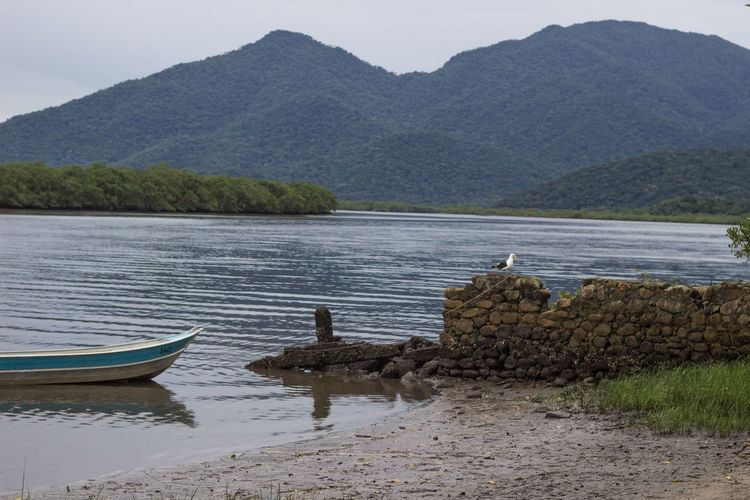 Seagull on stone wall by boat on lake against mountain with trees