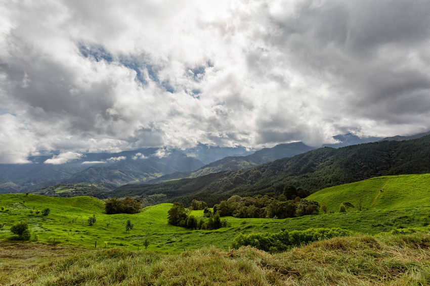 Rural farmland outside of Salento, Colombia. Cloud Colombia Farm Hiking Palm Pasture Quindío Rural Tree Trip Agriculture Andean Cauca Colombian  Countryside Forest Hike Jeep Landscape Outdoors Quindío Salento Tolima Trek Wax