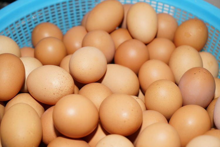 Chicken Basket Blue Buffet Cafe Chick Close-up Container Egg Food Food And Drink Freezer Freshness Half Cooked Healthy Eating Hotel Kitchen Many Omelette Protein Raw Food Refrigerator Scrambled Eggs Wellbeing White