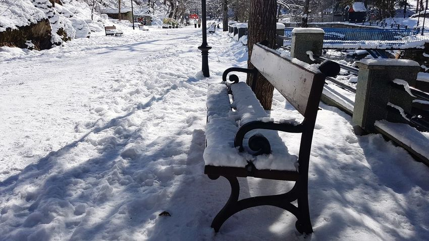 Winter Cold Temperature Beauty In Nature Snowing Frozen Georgia Extreme Weather Bench Bench With Snow