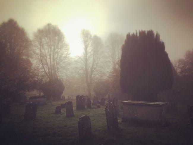 Fog Foggy Morning Graveyard Graveyard_dead Masters_of_darkness Malephotographerofthemonth Graveyard Beauty Fuzed_fotos EyeEm Best Shots