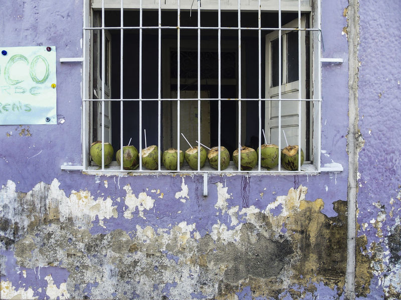EXO Exotic Food Exotic Fruits Weathered Weathered Wall Green Coconut Outdoor Bar Fresh Coconut Fresh Coconut Juice Wall Textures Brasil Salvador Bahia Olinda Summerfeeling Drinking Straw Window With Iron Ornaments Window Window Sill Full Frame No People Prison Shabby House Full Frame Coconuts