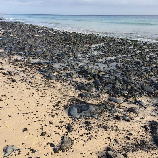 Fuerteventura Sommer Beach Sea Sand Stones On Sand Black Stones