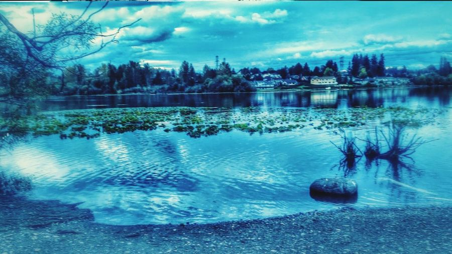Sky Nature Water Lake Tranquil Scene No People Scenics Tree Outdoors Beauty In Nature snohomish wa