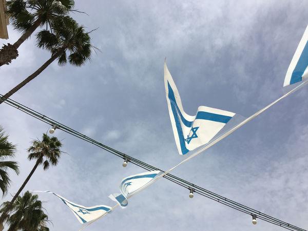 Blue Cloud - Sky Flag Israeli Flag Low Angle View No People Outdoors Palm Trees Sky Tree