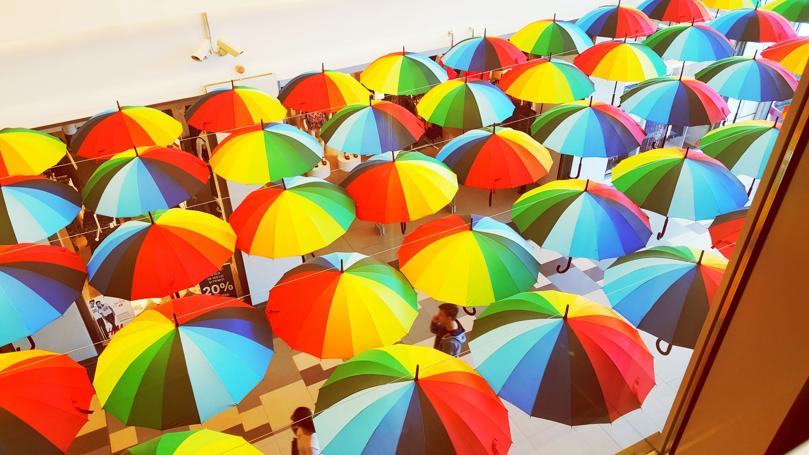 multi colored, colorful, hanging, low angle view, in a row, protection, abundance, yellow, variation, umbrella, leaf, sky, pattern, close-up, day, decoration, no people, backgrounds, full frame, large group of objects