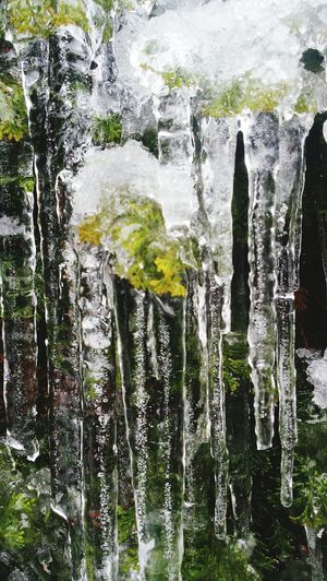 Iced Leave Water No People Day Motion Refreshment Outdoors Nature Close-up Beauty In Nature